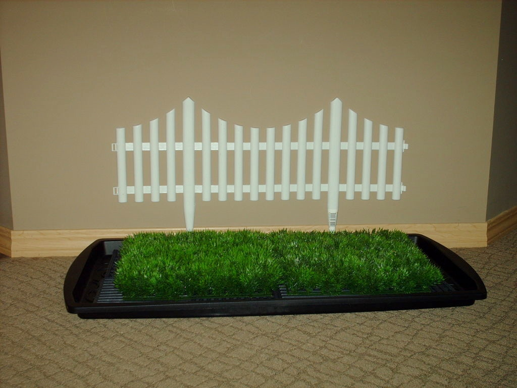residence city maryland with to dogs dog artificial pet turf in pertaining for doggy the potty and architecture grass baltimore porch indoor regard prepare