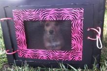 Cardboard-Box-Dog-Crate