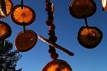 Cranberry-Orange-Chandelier-Feeder
