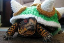 Crochet-Turtle-Bowser-Costume