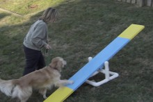 DIY-3-Event-Dog-Agility-Course