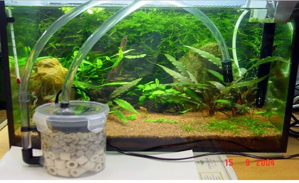 Diy Aquarium Filter Petdiys Com