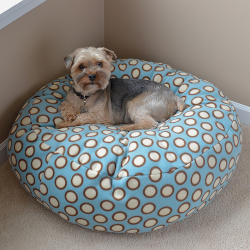 Diy Bean Bag Dog Bed