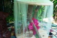 DIY-Butterfly-Cuccoon-House