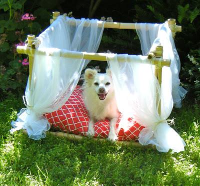 DIY Canopy Dog Bed Frame
