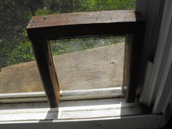Diy Dog Doors diy screen door dog door - petdiys