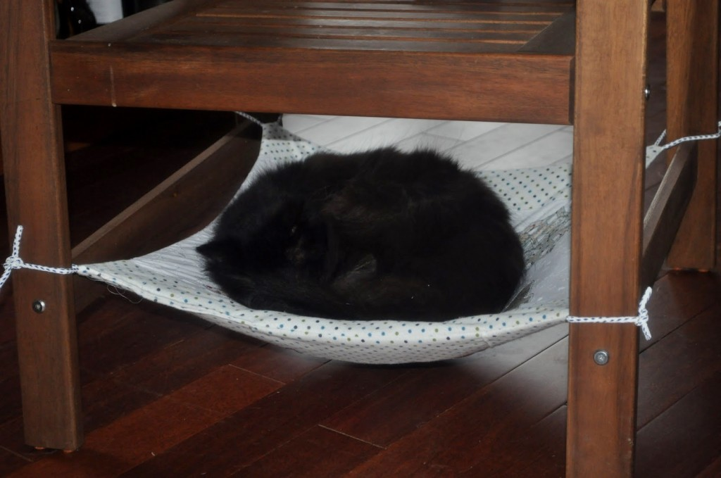 Diy Cat Chair Hammock Petdiys Com