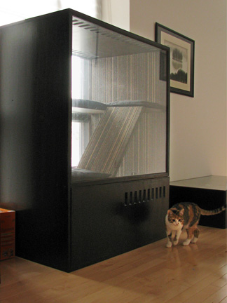 Diy Cat Safety Box Petdiys Com