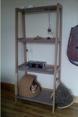 Diy cat tower shelf for Bookshelf cat tower