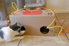 DIY-Cat-Toy-Box