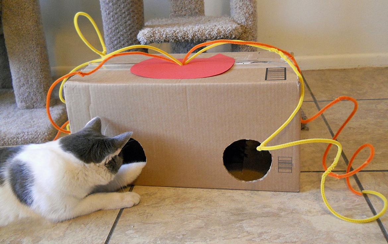 Для кошек игрушки своими руками