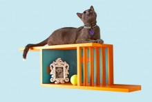 DIY-Cat-Wall-Shelf