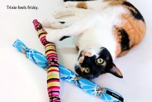 DIY-Cattail-Catnip-Cat-Toy