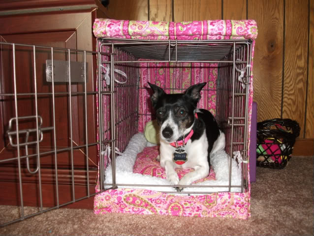 DIY Crate Cover amp Bed petdiyscom : DIY Crate Cover Pillow1 from petdiys.com size 638 x 479 jpeg 85kB