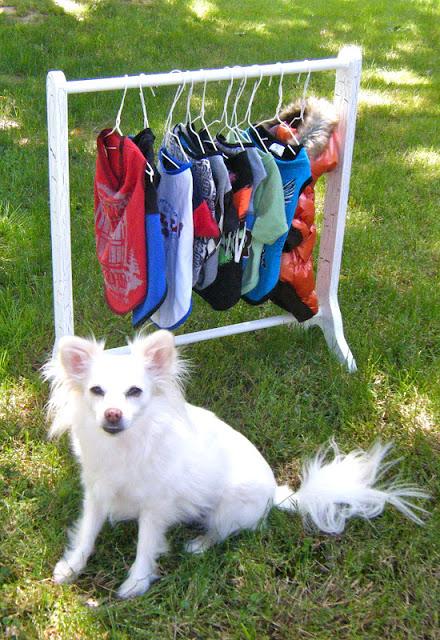 Diy Closet Clothes Rack Diy Dog Clothes Rack