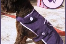 DIY-Dog-Coat