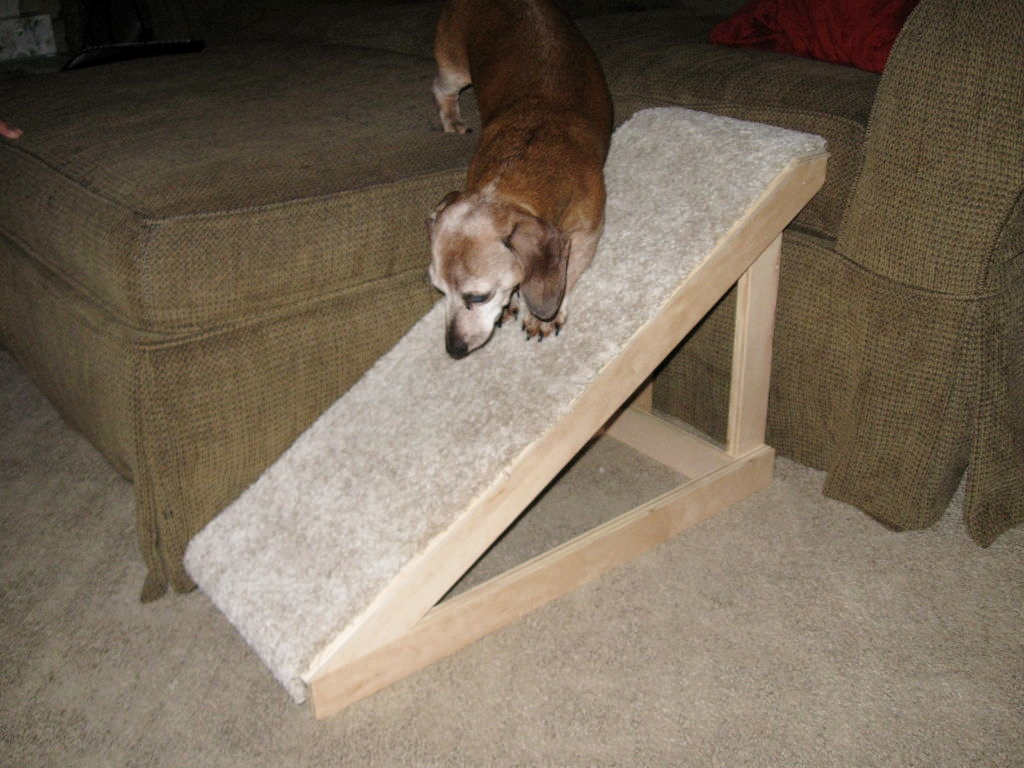Diy Dog Ramp Petdiys Com