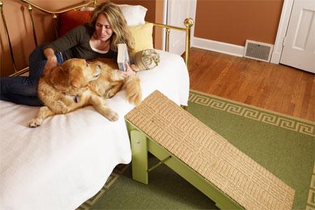Diy Folding Dog Ramp Petdiys Com