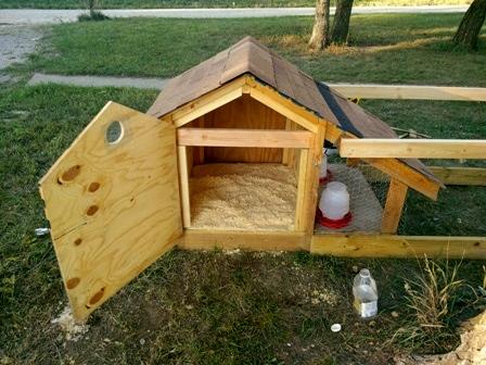 DIY Doghouse Chicken Coop - petdiys.com
