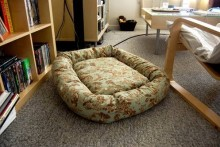 DIY-Doughnut-Dog-Bed