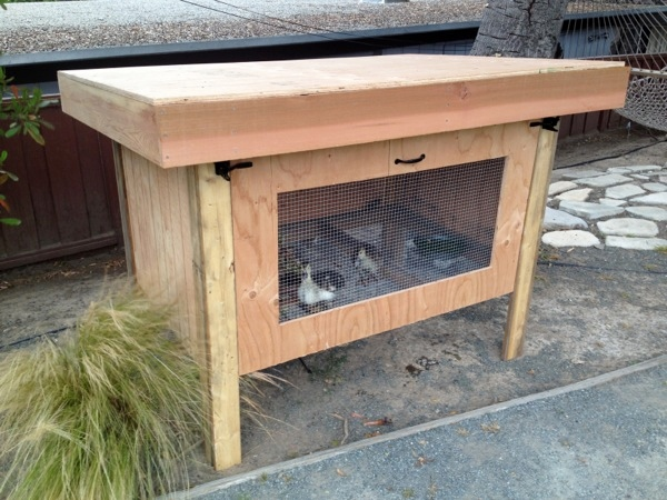 Diy duck coop for How to build a duck pen house