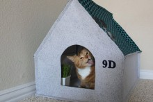 DIY-Fabric-Cat-House