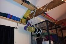 DIY-Ferret-Catwalk