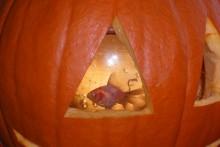 DIY-Fish-Bowl-Pumpkin