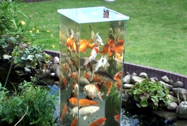 Diy fish observation tower for Diy outdoor fish pond