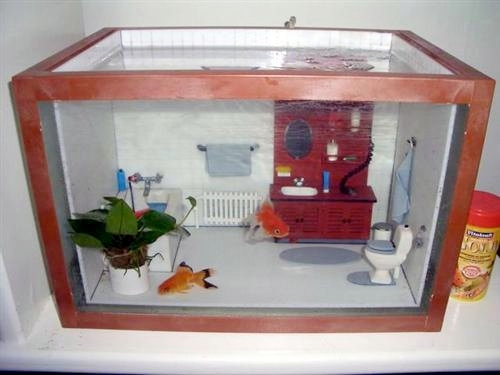 Fish tank ideas on pinterest fish tanks aquarium and for Fish tank house