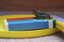 DIY-Frisbee-Frog-Pool