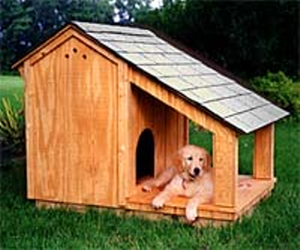 DIY Front Porch Doghouse petdiyscom