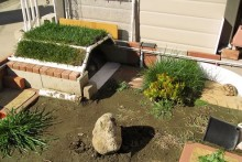 DIY-Green-Roof-Tortoise-Shelter