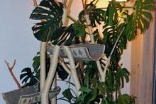DIY-Indoor-Cat-Tree
