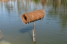 DIY-Mallard-Nest-Tube