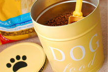 DIY-Pet-Food-Container