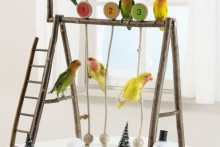 DIY-Pet-Swing-Set