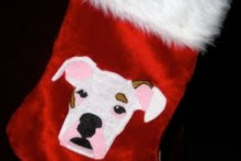 DIY-Photoshop-Pet-Portrait-Stocking