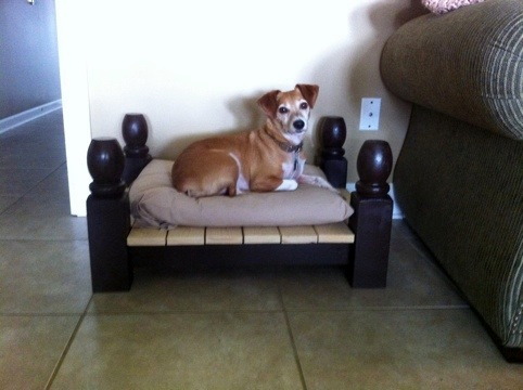 Diy Footboard Dog Bed Petdiys Com