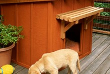 DIY-Ranch-Style-Doghouse