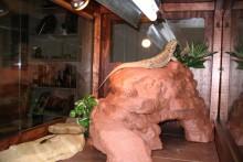DIY-Reptile-Cave