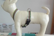 DIY-Ribbon-Dog-Harness1