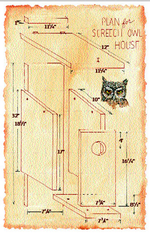 diy screech owl nest box - petdiys
