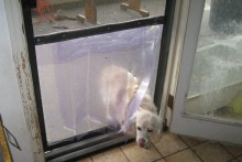 DIY-Screen-Door-Dog-Door