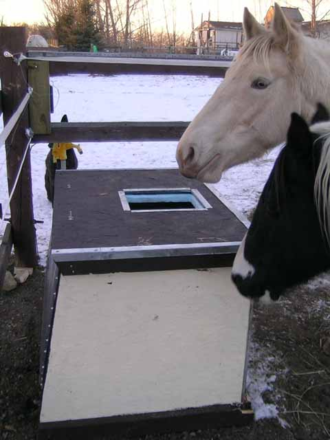 Diy Solar Heated Water Trough Petdiys Com
