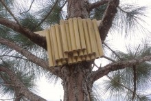 DIY-Solitary-Bee-Hotel