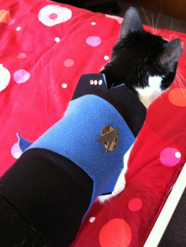 & DIY Star Trek Cat Costume - petdiys.com