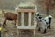 DIY-Wood-Hay-Trough1