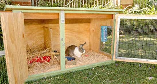 Diy Wood Rabbit Hutch Petdiys Com