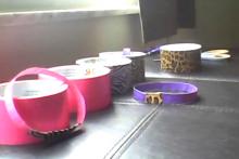 Duct-Tape-Pet-Collar